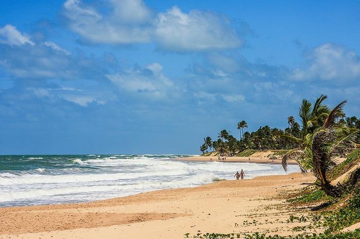 beach-518188_960_720.jpg